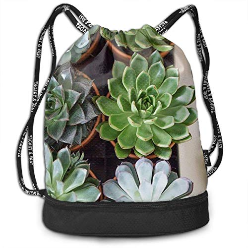 zhangyuB Polyester Bolsa con cordón Theft Proof Water Resistant Large Gymsack Large Capacity For Basketball, Volleyball, Baseball, Sports & Workout Gear (Colorful Succulent Green Plants)