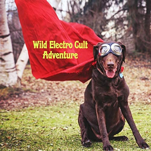 Wild Electro Cult