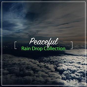#13 Peaceful Rain Drop Collection