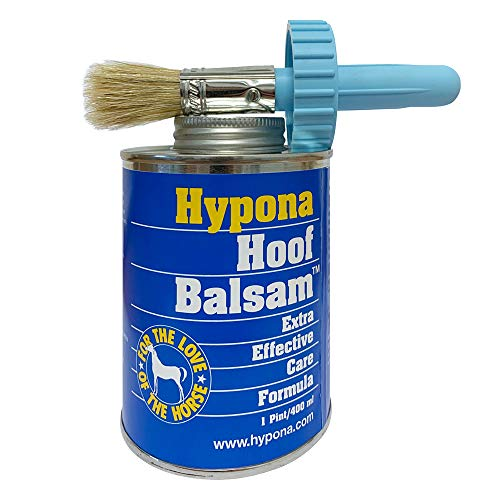 Hypona Hypona 400ml inklusive Pinsel Bild