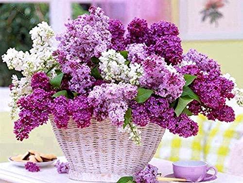 Flor simple pintura de diamantes flor lila bordado de diamantes punto de cruz florero mosaico de diamantes de imitación hecho a mano kit A9 60x80cm