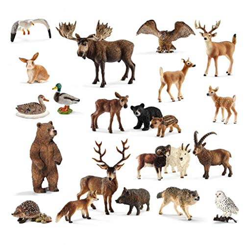 SCHLEICH Heimische Wildtiere-Set, 22 Tiere, inkl. Aufbewahrungsbox ׀ Wiemann Lehrmittel