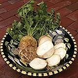 ASTONISH Pacchetto semi: 1/8 Gram Semi di Sedano rapa Brilliant