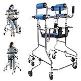 WM Caminata Auxiliar de Rehabilitación de Aleación de Aluminio con Apoyabrazos, Ayuda de Movilidad para Caminar para Ancianos Ajustable En Altura para Discapacitados, Entrenamiento,Azul