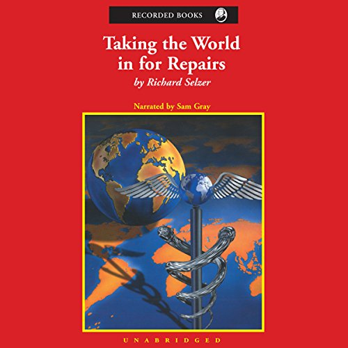 Taking the World in for Repairs audiobook cover art