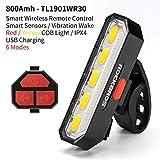 Bicycle Bike Light Waterproof Taillight LED USB Rechargable Safety Night Riding Warning Saddle Rear Light Bike Lamp WR30