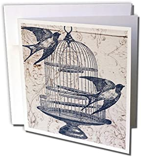 Vintage Birds with Bird Cage Steampunk Art - Greeting Card, 6 x 6 inches, single (gc_110264_5)