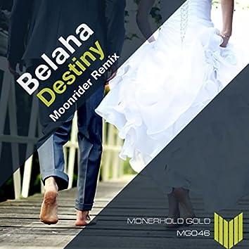 Destiny (Moonrider Remix)