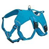 Best Pet Supplies, Inc. Voyager Padded & Breathable Control Dog Walking Harness for Big/Active Dogs, (Turquoise, Medium)
