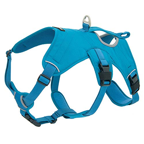 Best Pet Supplies Voyager Padded & Breathable Control Dog Walking Harness for Big/Active Dogs, (Turquoise, Medium)