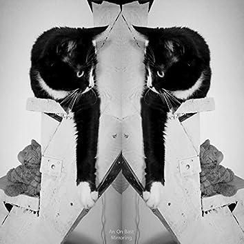 Mirroring - Single