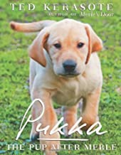 Best pukka the pup after merle Reviews