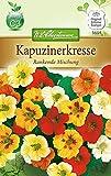 N.L. Chrestensen 5654 Kapuzinerkresse Rankend (Kapuzinerkressesamen)