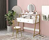 RAAMZO Vanity Table Set with Mirror, Laptop Computer Desk, Makeup Vanity Desk with 2 Drawers & Desktop Shelf with Metal Frame for Women Girls, White and Champagne Gold Finish