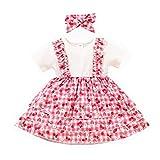 Loalirando Vestido de encaje para bebé con flores y lazo, manga corta, para niñas, vestido de cuello redondo y fruta, falda estampada para el pelo Cereza rosa 3-6 Meses