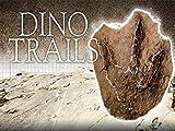 British Columbia's Dinosaur Frontier