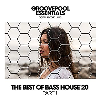 The Best Of Bass House '20 (Part 1)