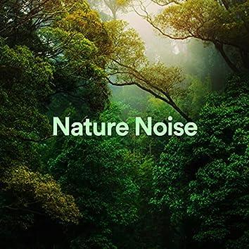 Nature Noise
