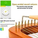 Immagine 2 24 21 string lyre harp