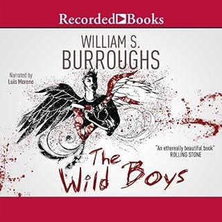 Wild Boys cover art