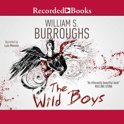 Wild Boys audiobook cover art