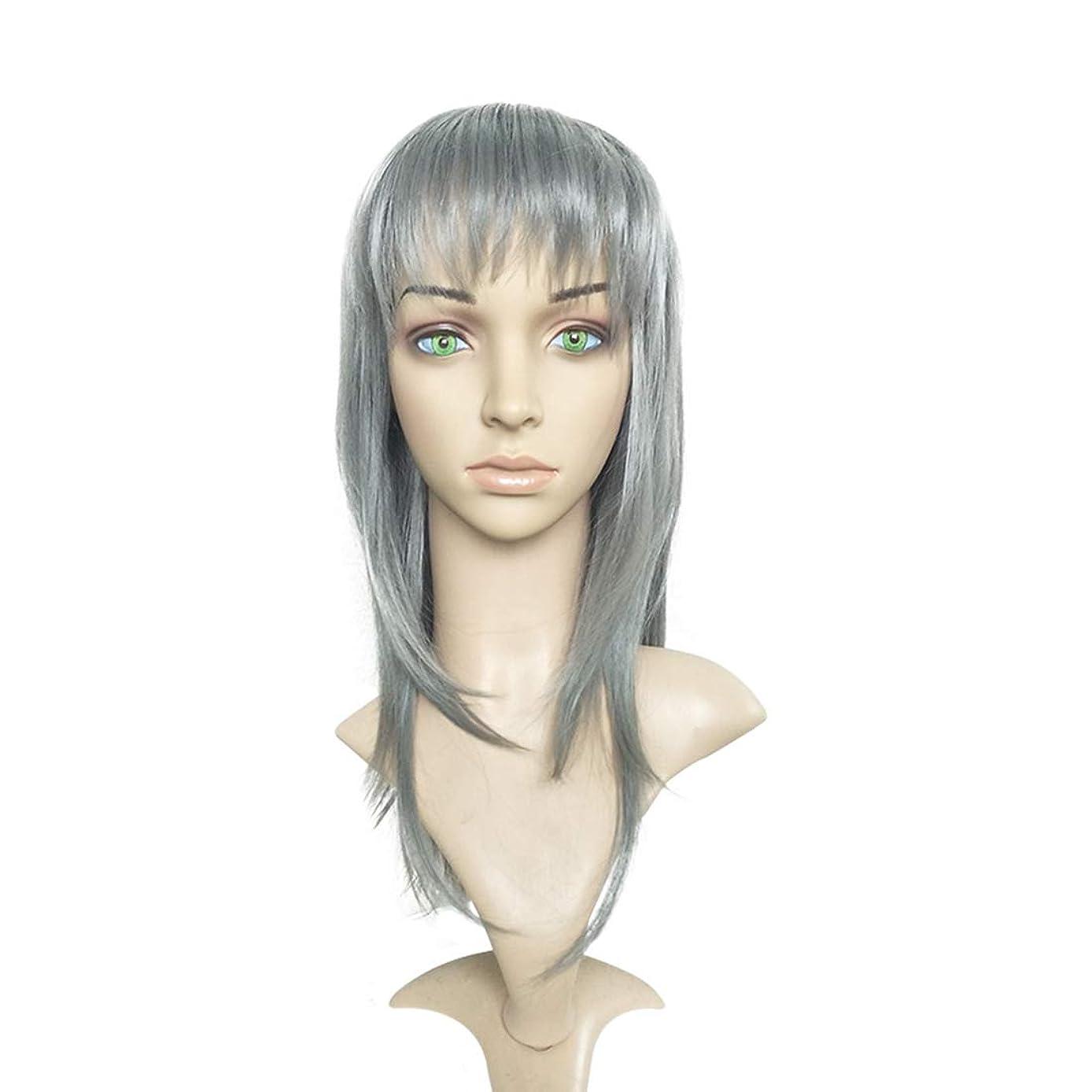 Koloeplf ヨーロッパとアメリカのパーティーウィッグシルバーグレーブロークンバングストレートヘアウィッグ (Color : Silver gray)