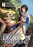 Reincarnated as a Dragon Hatchling (Light Novel)...