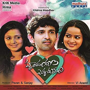 Hrudhayam Ekkadunnadi (Original Motion Picture Soundtrack)