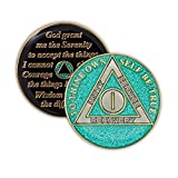AA recovery gifts are a constant reminder of support for continued sobriety and living the 12 steps one day at a time Multistage plating with real gold on stamped brass and smooth epoxy dome for a brilliant shine Celebrate 1 year of recovery with 5 s...