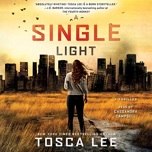 A Single Light cover art
