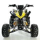 Kinder Quad ATV 125 ccm schwarz
