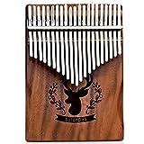 Kalimba 21keys Thumb Piano Marimba with Learning Instruction and High Performance Waterproof Protective Carrying Bag (Professional 21keys karimba instrument)