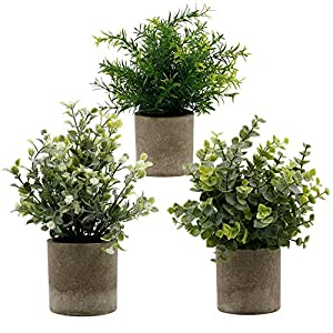 Zcaukya Small Potted Artificial Plants, Artificial Eucalyptus Plants Fake Rosemary White Baby's Breathe 9.5″ Plastic Greenery Plants for Home Office Garden Decor, Indoor & Outdoor, Set of 3 (White)