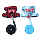 Alfie Pet - Taylir 2-Piece Set Harness and Leash Set for Small Animals Like for Mouse, Chinchilla, Rat, Gerbil, and Dwarf Hamster - Color: Blue and Red, Size: Medium