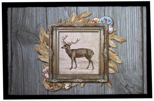 Rosalie bonbon Collection Pets 87 - Felpudo (40 x 60 cm, poliéster, Parte Trasera de PVC, Libre de ftalatos, impresión fotográfica), diseño de Mascotas