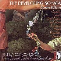Developing Sonata