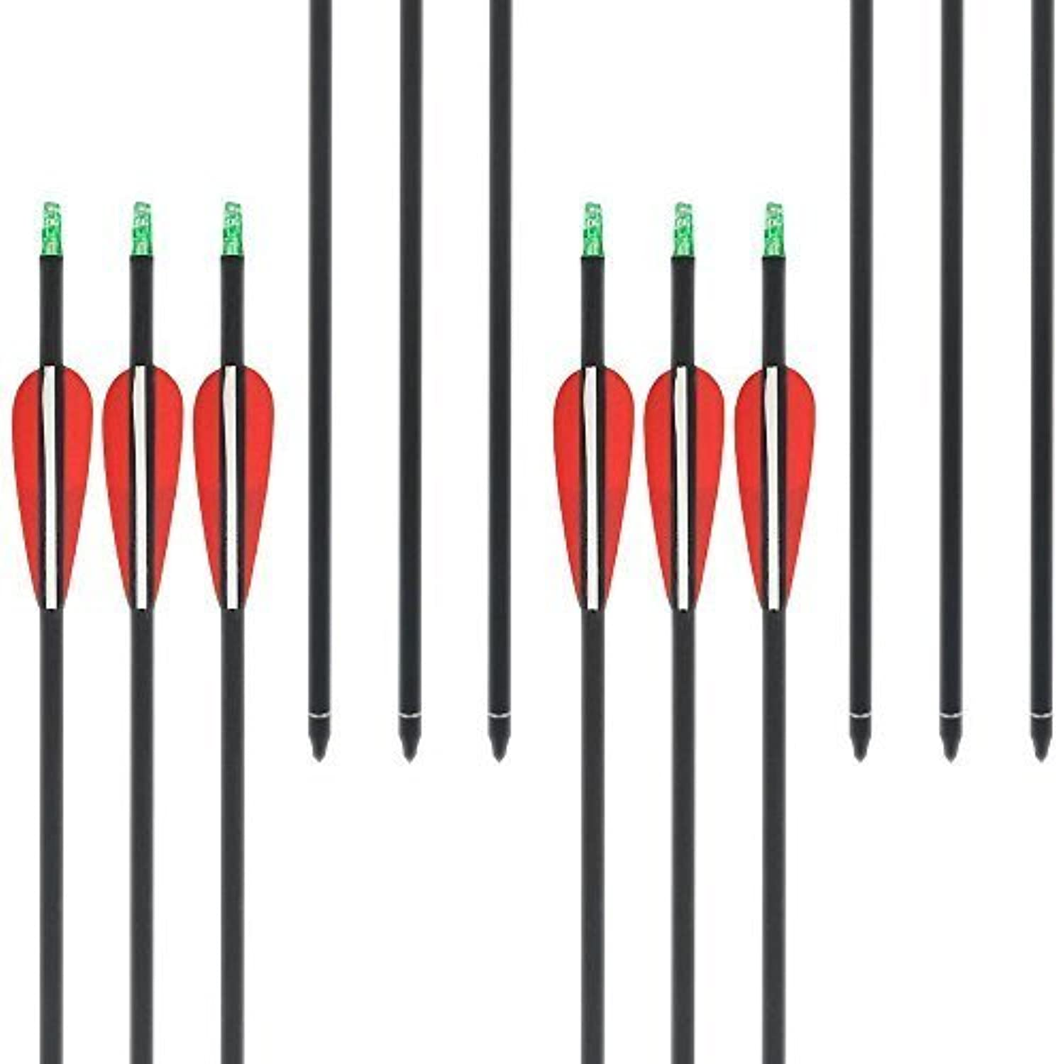 HBG 31Inch Carbon Arrows Shaft Spine 600 Archery Hunting Shooting Target Arrows For Recurve Compound Bow (12pack)