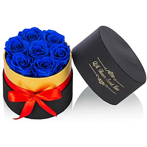 NUPTIO Royal Blue Preserved Roses Small Box of Roses Infinity Rose Flower That Last 2-3 Years, Real Flowers for Valentine's Day Mother's Day Birthday Christmas Anniversary Wedding Thanksgiving