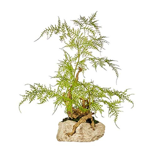 WQF Artificial Flora New Chinese-style Welcoming Pine Artificial Cedar, Green Value Decoration Hotel Villa Artificial Potted Living Room Porch Zen Ornament Simulation Plant Artificial Bonsai