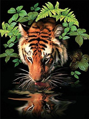 Fuumuui Lienzo de Bricolaje Regalo de Pintura al óleo para Adultos niños Pintura por número Kits Decoraciones para el hogar -Bebida de Tigre de Agua 16 * 20 Pulgadas