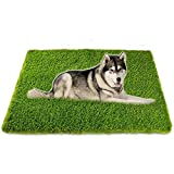 Artificial Grass, Professional Dog Grass Mat, Potty Training Rug and Replacement Artificial Grass Turf, Large Turf Outdoor Rug Patio Lawn Decoration, Easy To Clean with Drainage Holes(32inch x 48inch)