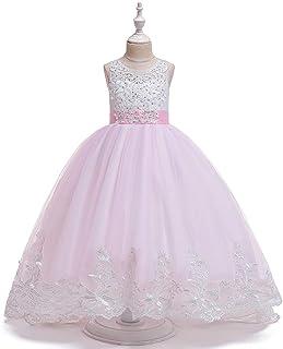 BCSHF Vestido de Princesa de Las niñas De los niños Vestido Bordado Espalda Abierta Mullido de la Princesa Vestido de Novi...