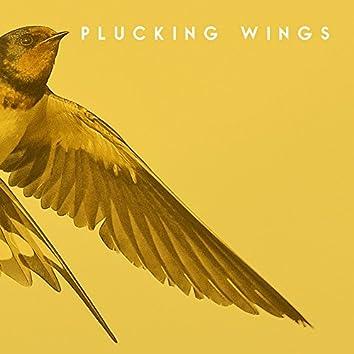 Plucking Wings - EP