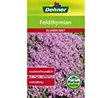 Dehner Blumen-Saatgut, Feldthymian, 5er Pack (5 x1 g)