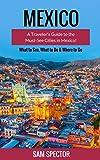 Mexico: A Traveler's Guide to the Must-See Cities in Mexico! (Mexico City, Cancun, Cozumel, Mazatlan, Puerto Vallarta, Guanajuato, San Miguel de Allende, ... Merida, Tulum, Mexico) (English Edition)