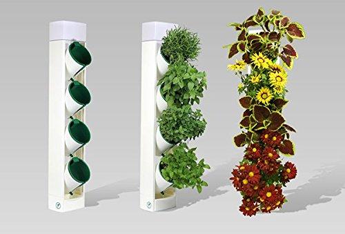 fertilizante para orquideas nutrigarden fabricante Molding Home
