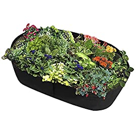 Fabric Raised Planting Bed, Garden Grow Bags Herb Flower Vegetable Plants Bed Rectangle Planter 2'x4' (3ft x 6ft) (2ft x… 4 ✭ Made of a fabric material, a highly durable, UV resistant, non-woven fabric that provides exceptional air flow throughout the soil and root systems and allows excess moisture to easily drain away.Tips:Because they are felt material,in order to stay up be more perfect,you can some kind of a frame to help hold them up. ✭ Quickeasy to setup, relocate, wash and store for future use. Reusable containers durable enough for many seasons use. ✭ Easy to use: unfold, fill and grow; Ideal for an herb garden, small flower garden or vegetables.