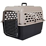 How big should your dog crate be? Size matters! 2