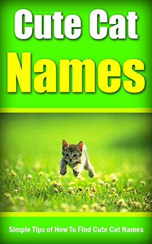 Collar Gato Personalizado  marca
