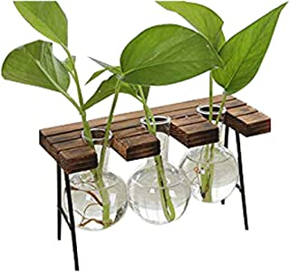 Desktop Glass Flower Pot Bulb Vase with Retro Solid Wood Small Bench Frame for Hydroponic Plant Family Garden Wedding Decoration (3)